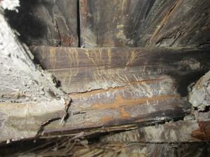 Holzschutz1
